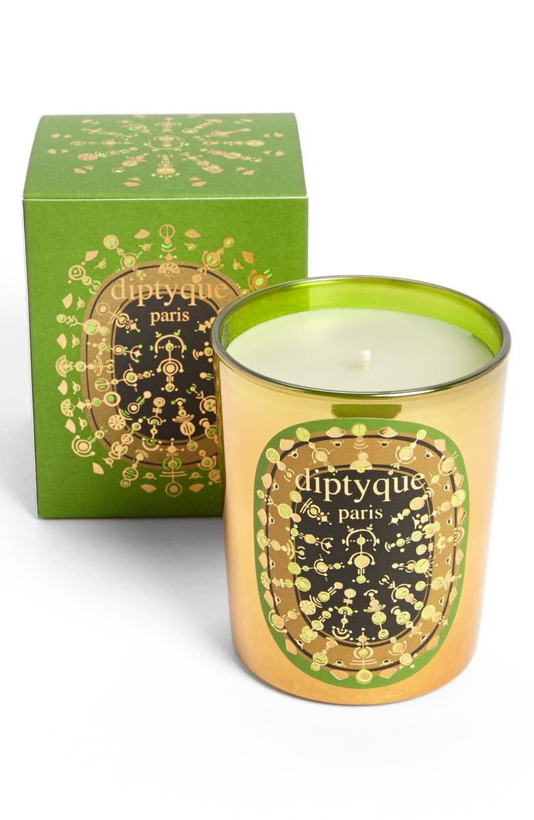 DIPTYQUE 'Pine Bark' Candle, Main, color, 000