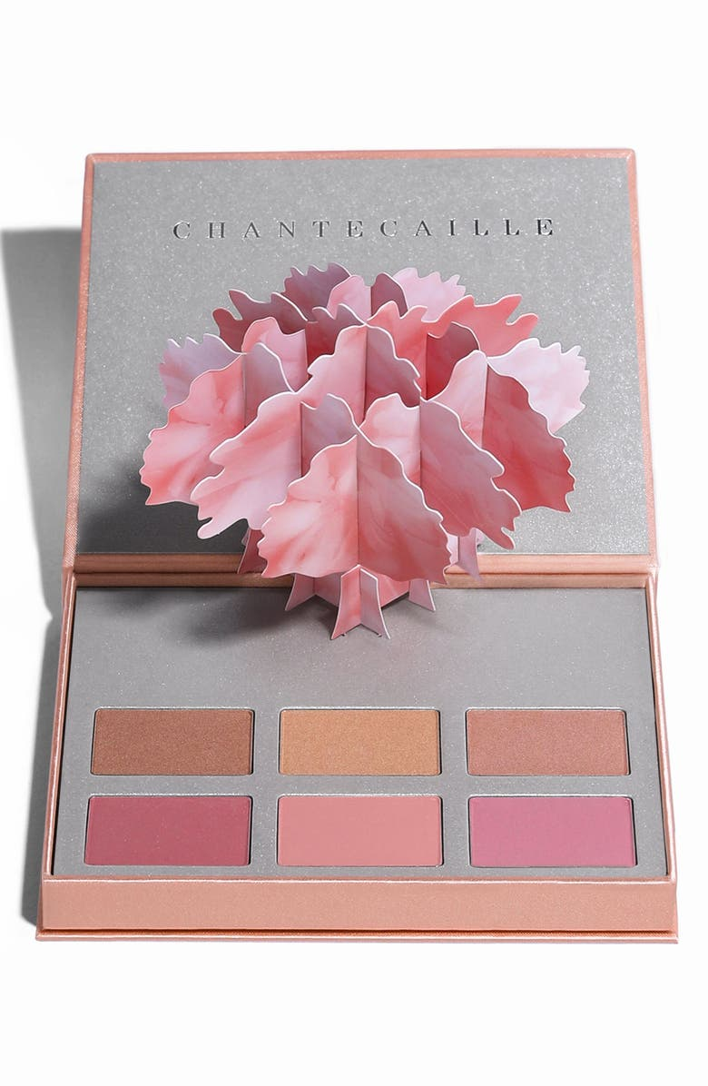 CHANTECAILLE L'Abre Illumine Palette, Main, color, 000