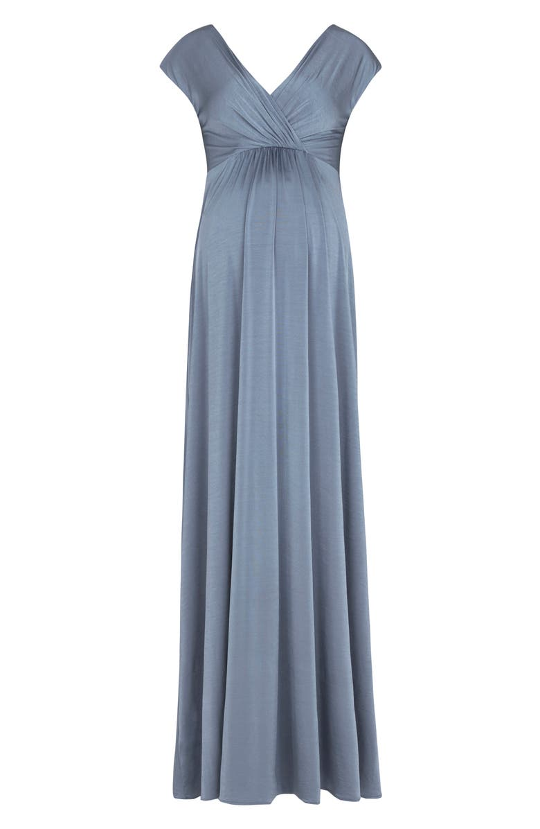 TIFFANY ROSE Francesca Maternity/Nursing Gown, Main, color, BLUE