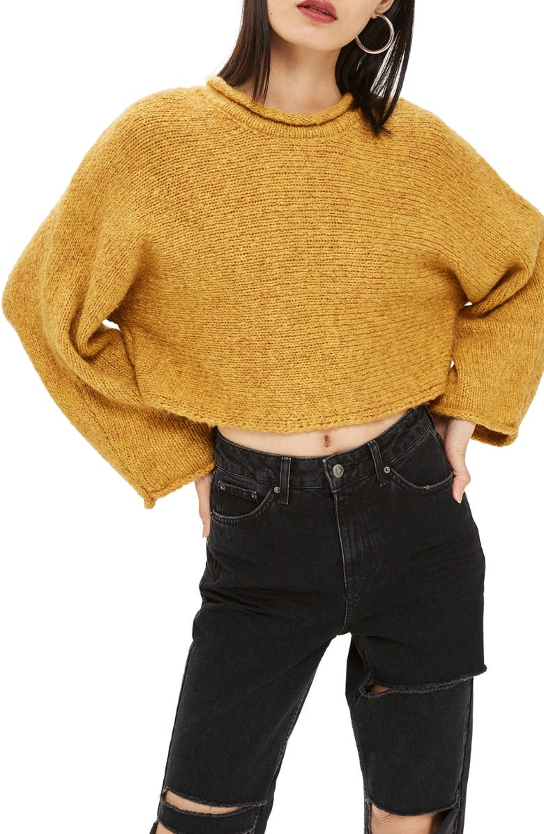 TOPSHOP Punk Roll Neck Crop Sweater, Main, color, 701