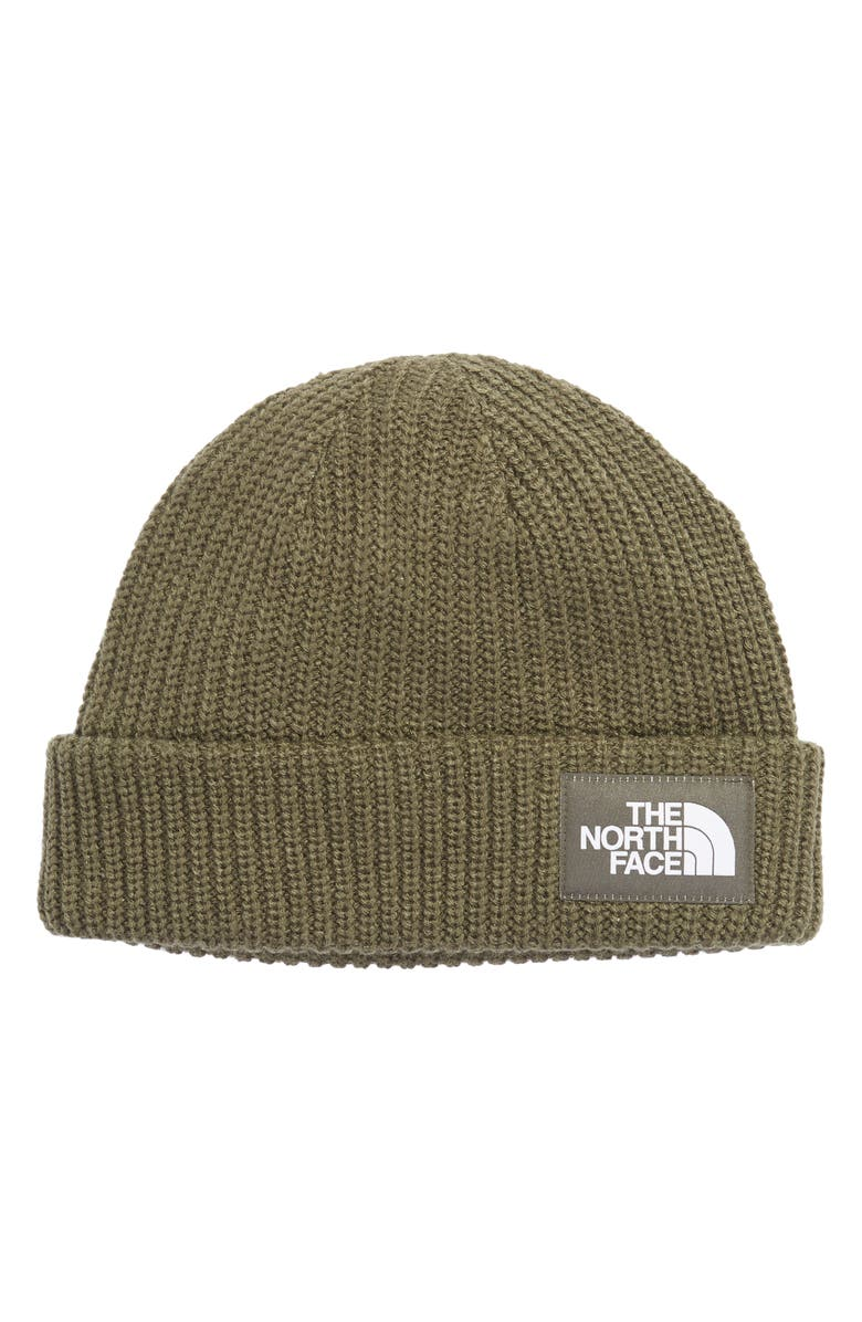 THE NORTH FACE Salty Dog Beanie, Main, color, 303