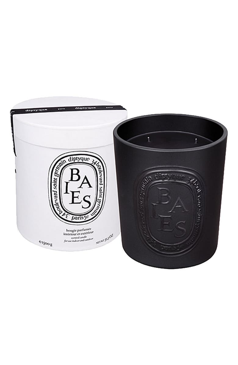 DIPTYQUE Baies/Berries Indoor & Outdoor Candle, Main, color, NO COLOR