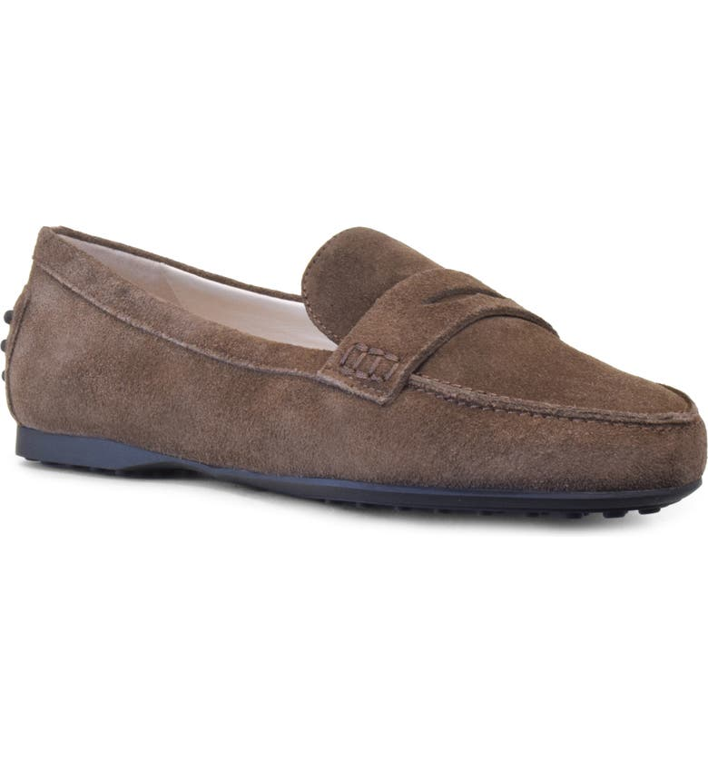 AMALFI BY RANGONI Dominic Penny Loafer, Main, color, BARK SUEDE