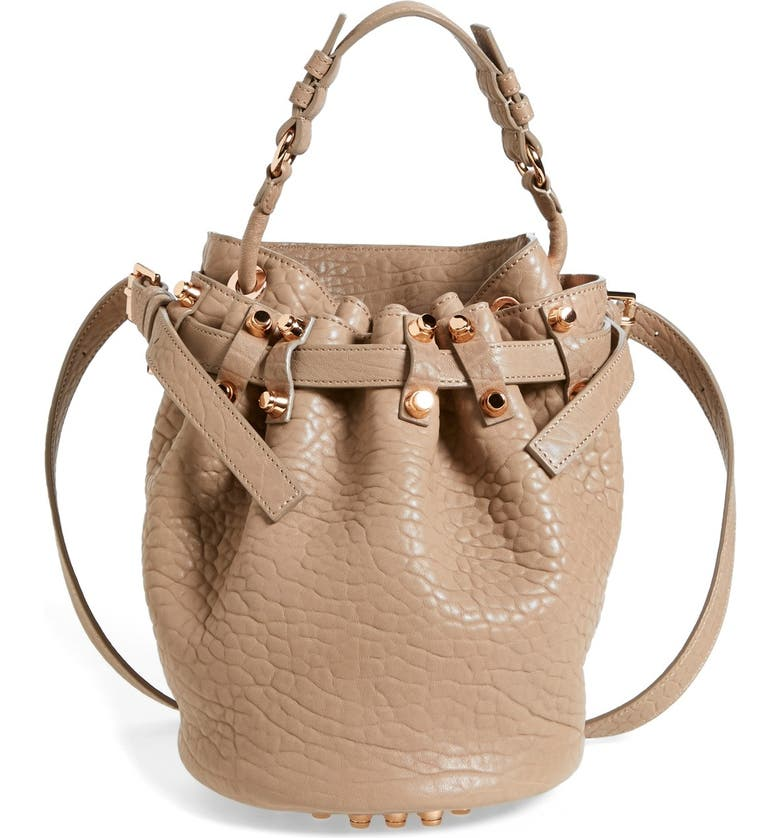 ALEXANDER WANG 'Small Diego - Rose Gold' Leather Bucket Bag, Main, color, LATTE