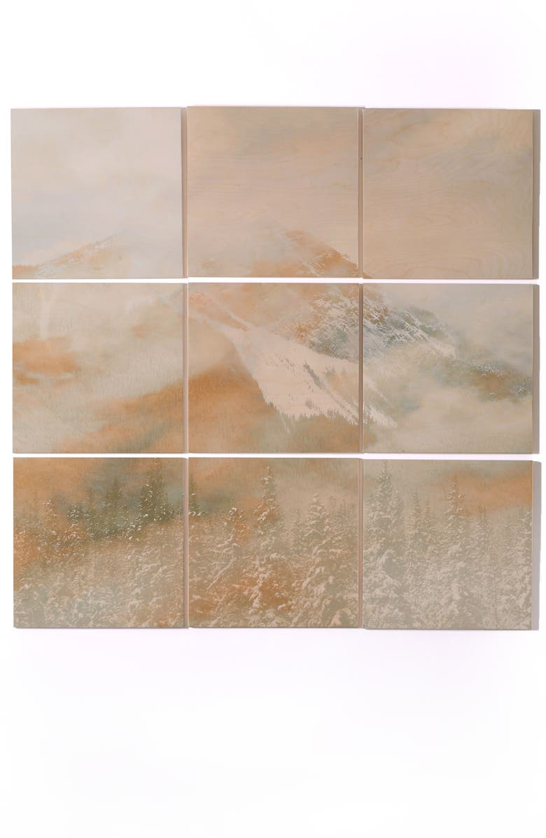 DENY DESIGNS Golden Banff 9-Piece Wood Wall Mural, Main, color, GRAY/ GOLD