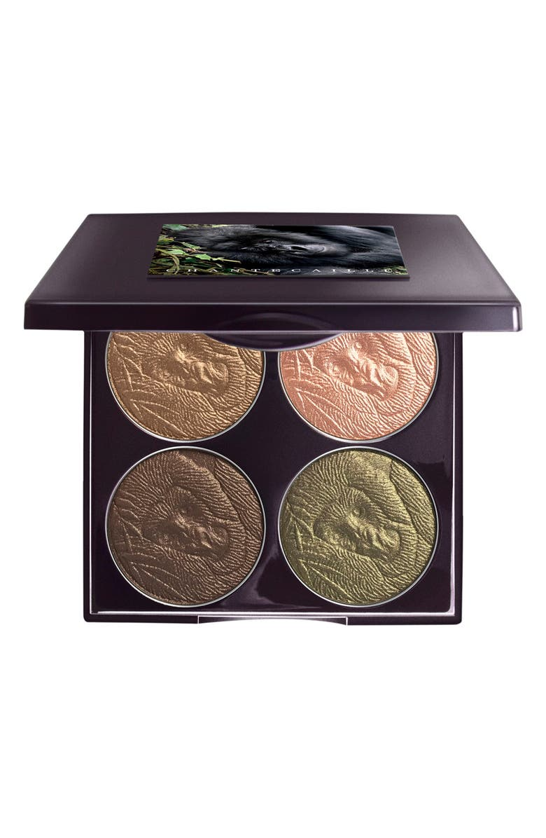 CHANTECAILLE Save the Forest Eye Palette, Main, color, 000