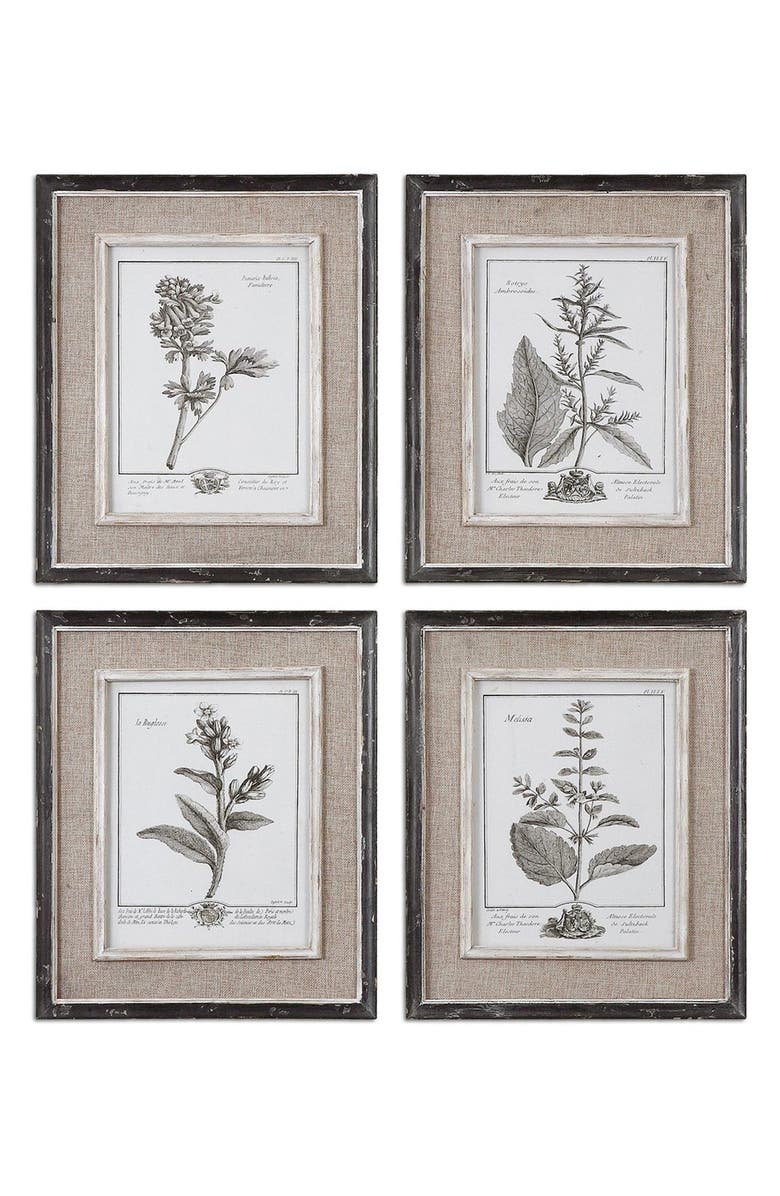 UTTERMOST Casual Grey Study Set of 4 Botanical Prints, Main, color, 100