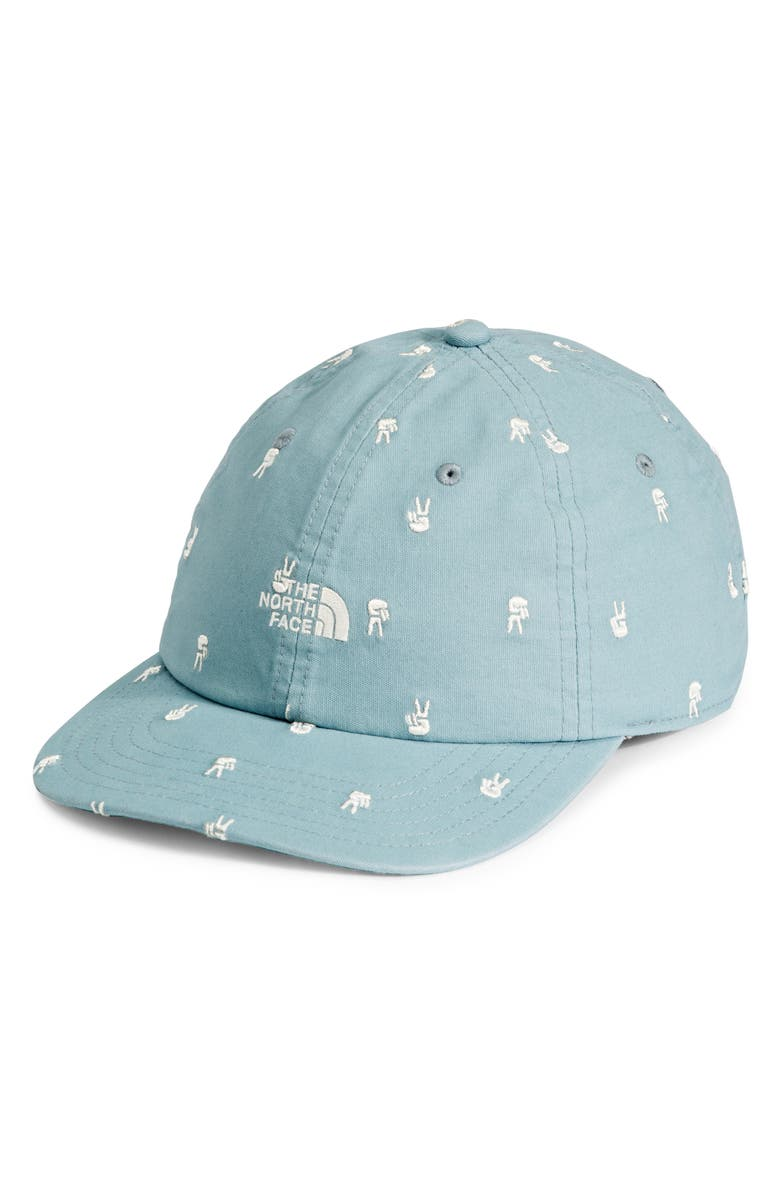 THE NORTH FACE Washed Norm Hat, Main, color, TOURMALINE BLUE