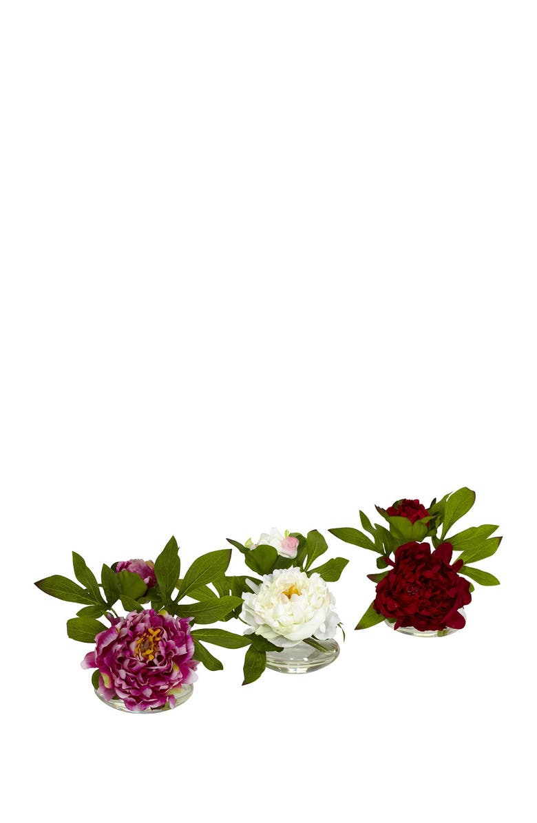 NEARLY NATURAL Peony Arrangement in Glass Vase - Set of 3, Main, color, ASSORTED