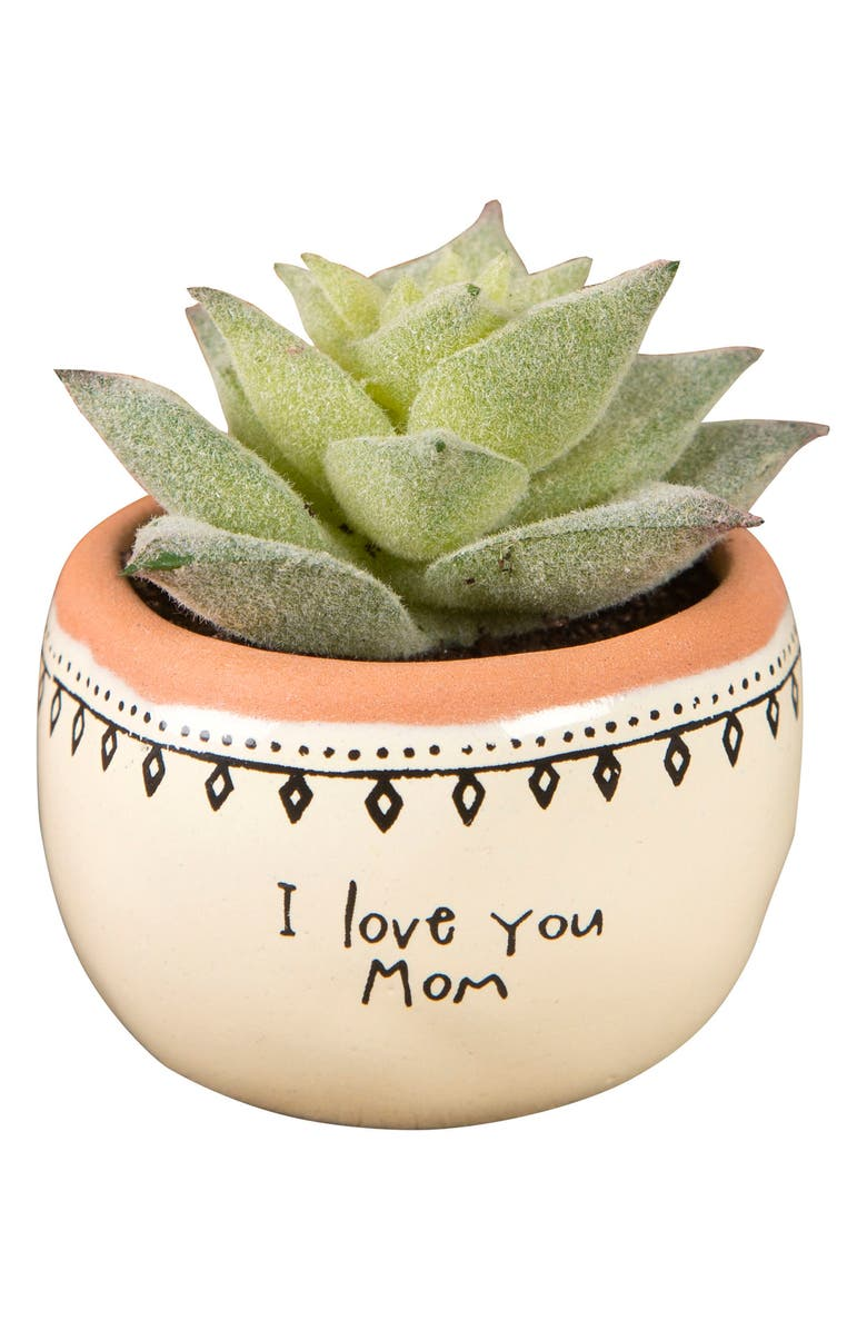 NATURAL LIFE I Love You Mom Mini Potted Succulent, Main, color, 300