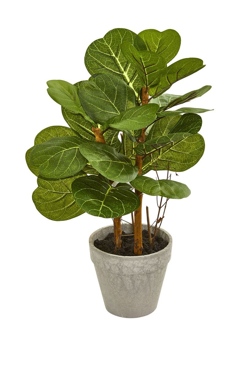 """NEARLY NATURAL 22"""" Fiddle Leaf Artificial Plant, Main, color, GREEN"""
