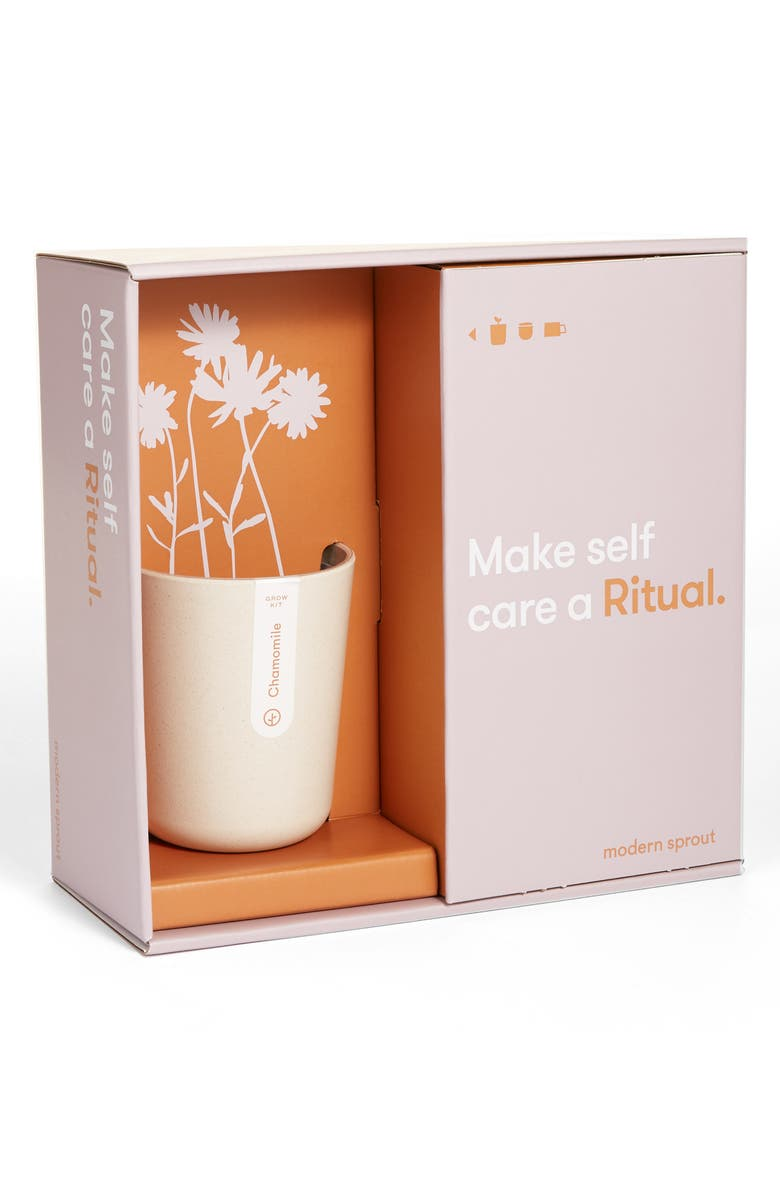 MODERN SPROUT Live Well Ritual Gift Set, Main, color, RITUAL