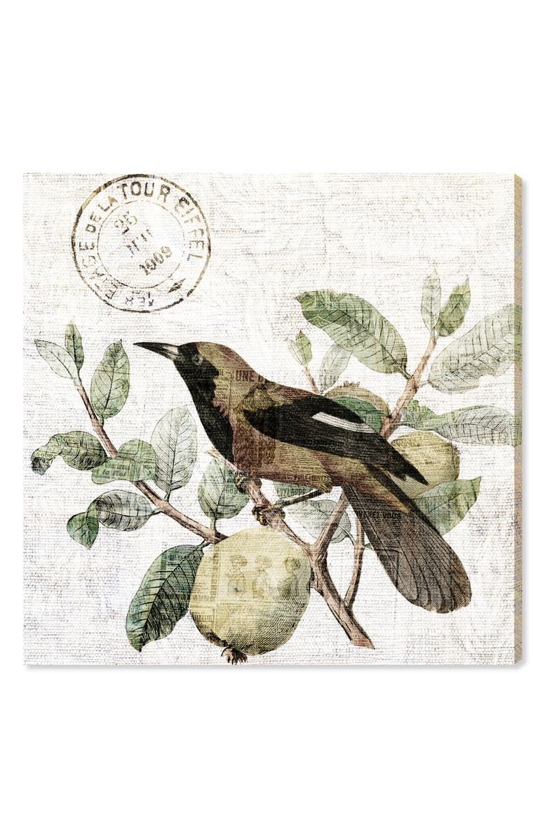 OLIVER GAL Bird in the Tree Light Canvas Wall Art, Main, color, GREEN