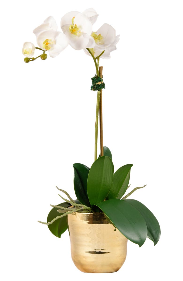 BLOOMR Kingly Orchid Planter Decoration, Main, color, GOLD SMALL