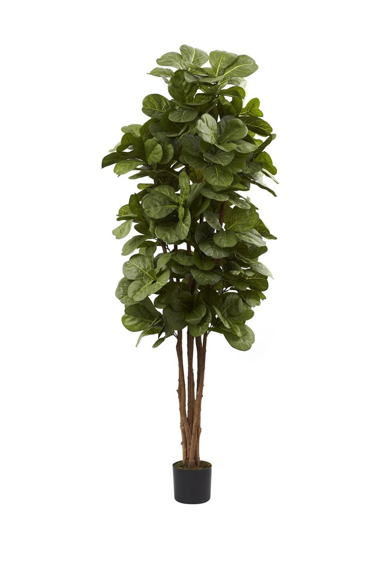 NEARLY NATURAL Green 6' Fiddle Leaf Fig Tree, Main, color, GREEN