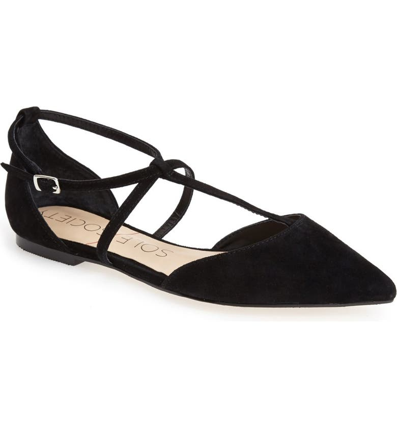 SOLE SOCIETY 'Chandler' Pointy Toe Flat, Main, color, 001
