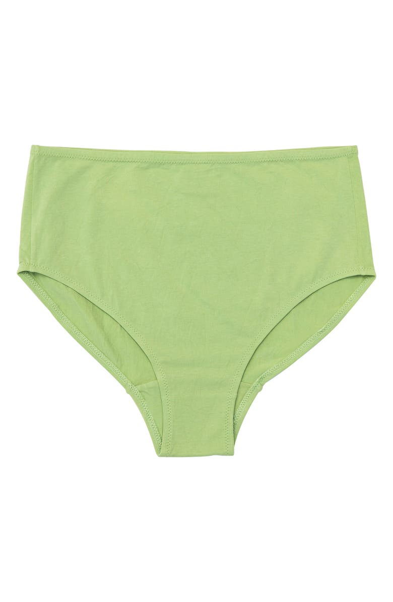 NICO Plant Dyed Organic Cotton Mid Rise Briefs, Main, color, 300