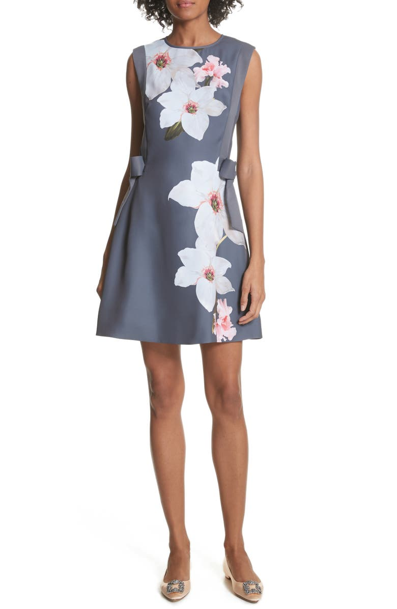 TED BAKER LONDON Chatsworrth A-Line Dress, Main, color, 030