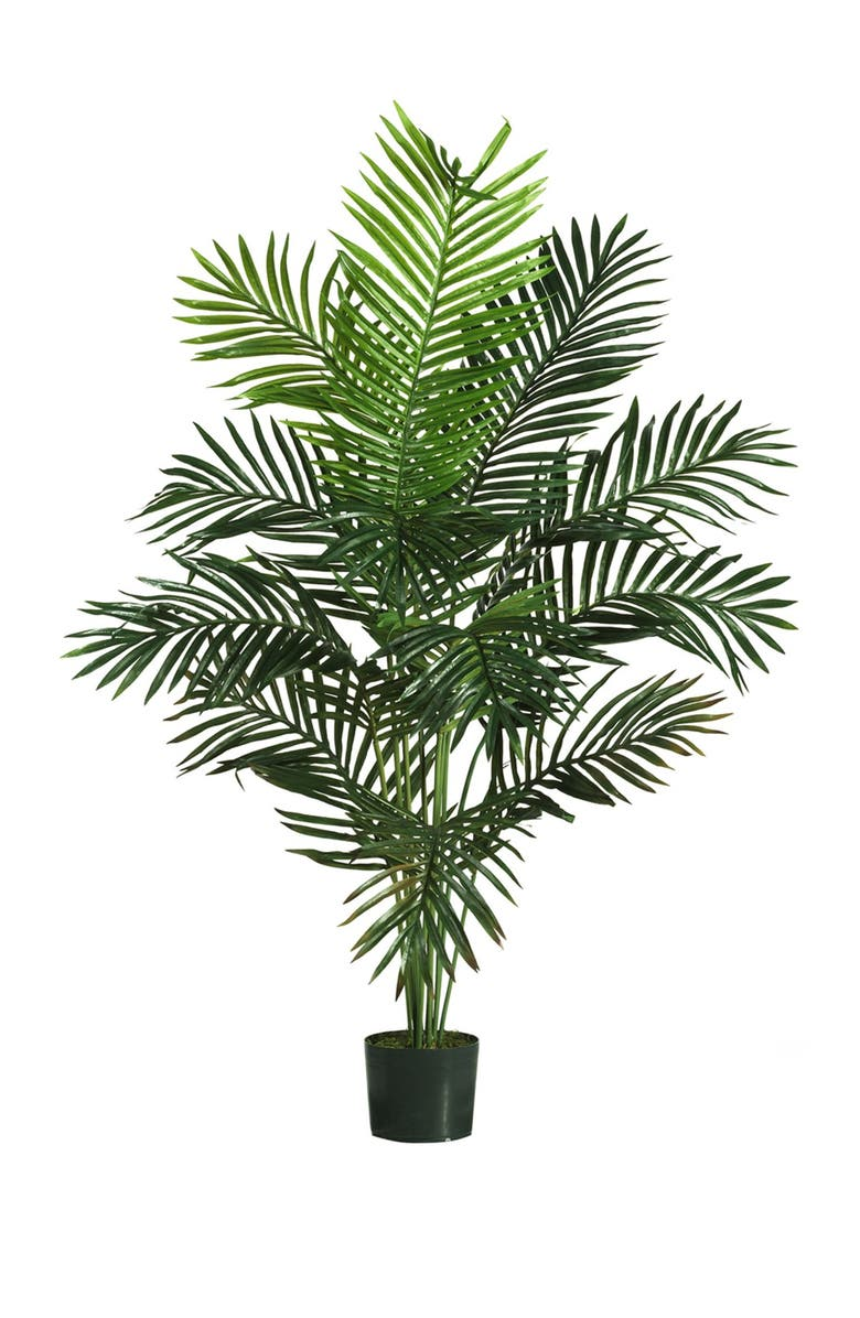 NEARLY NATURAL 5ft. Paradise Palm, Main, color, GREEN