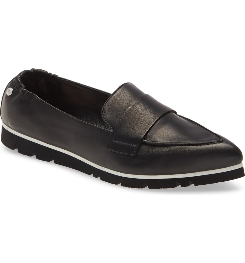 AGL Micro Pointed Toe Loafer, Main, color, BLACK LEATHER