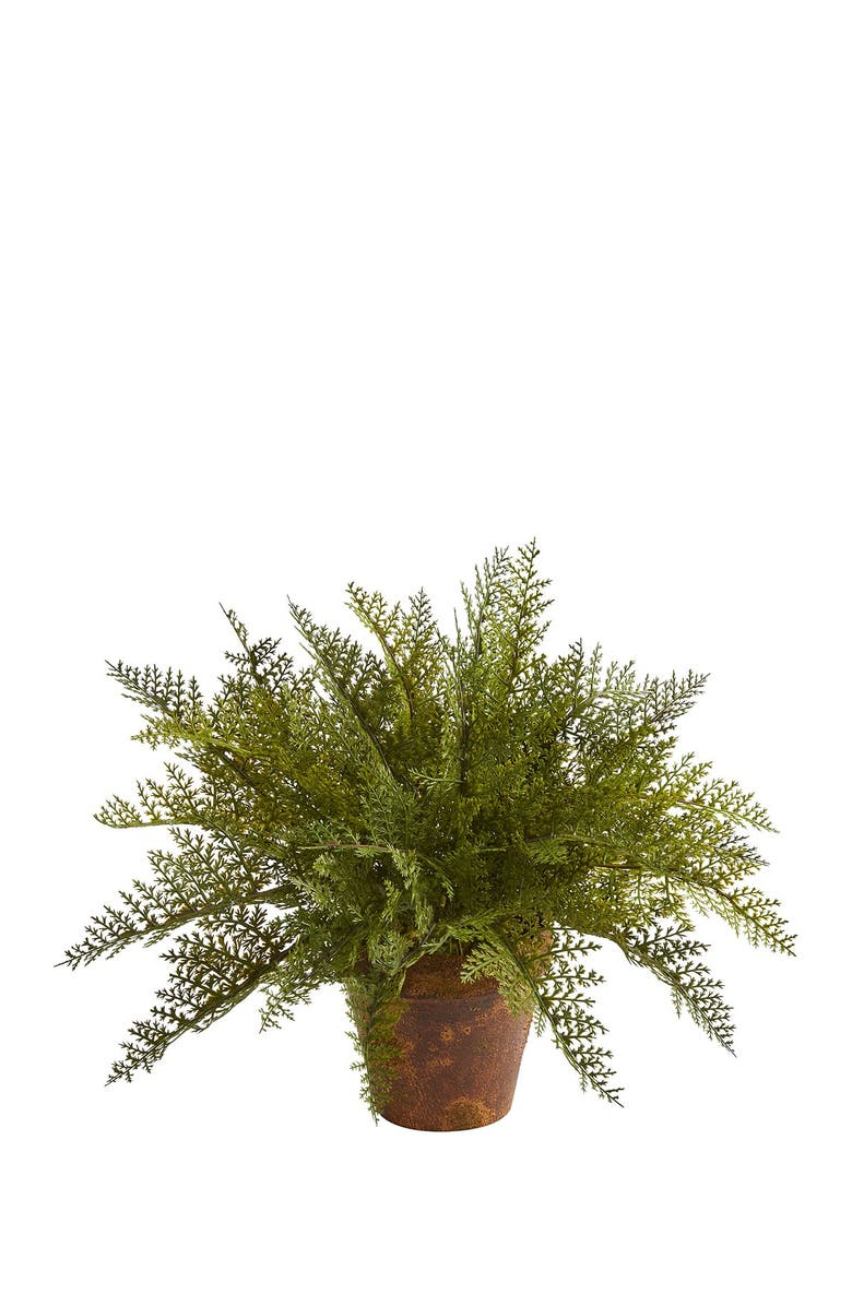 """NEARLY NATURAL 19"""" Maiden Hair Fern Artificial Plant in Decorative Planter - Green, Main, color, GREEN"""