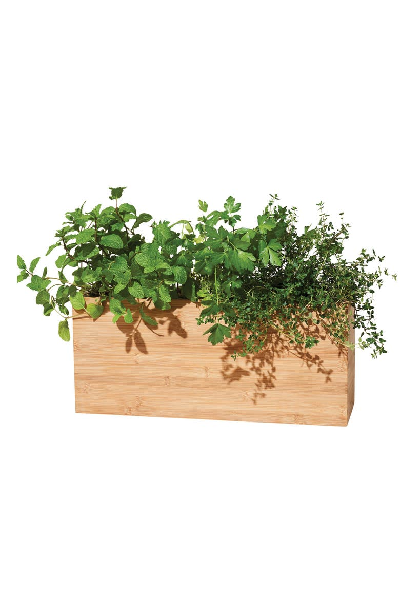 MODERN SPROUT Smart Indoor Hydroplanter, Main, color, WOOD
