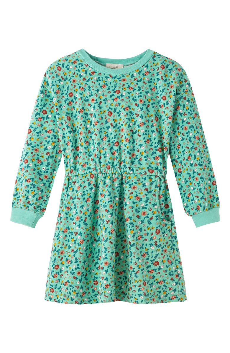 PEEK AREN'T YOU CURIOUS Floral Long Sleeve French Terry Dress, Main, color, 300