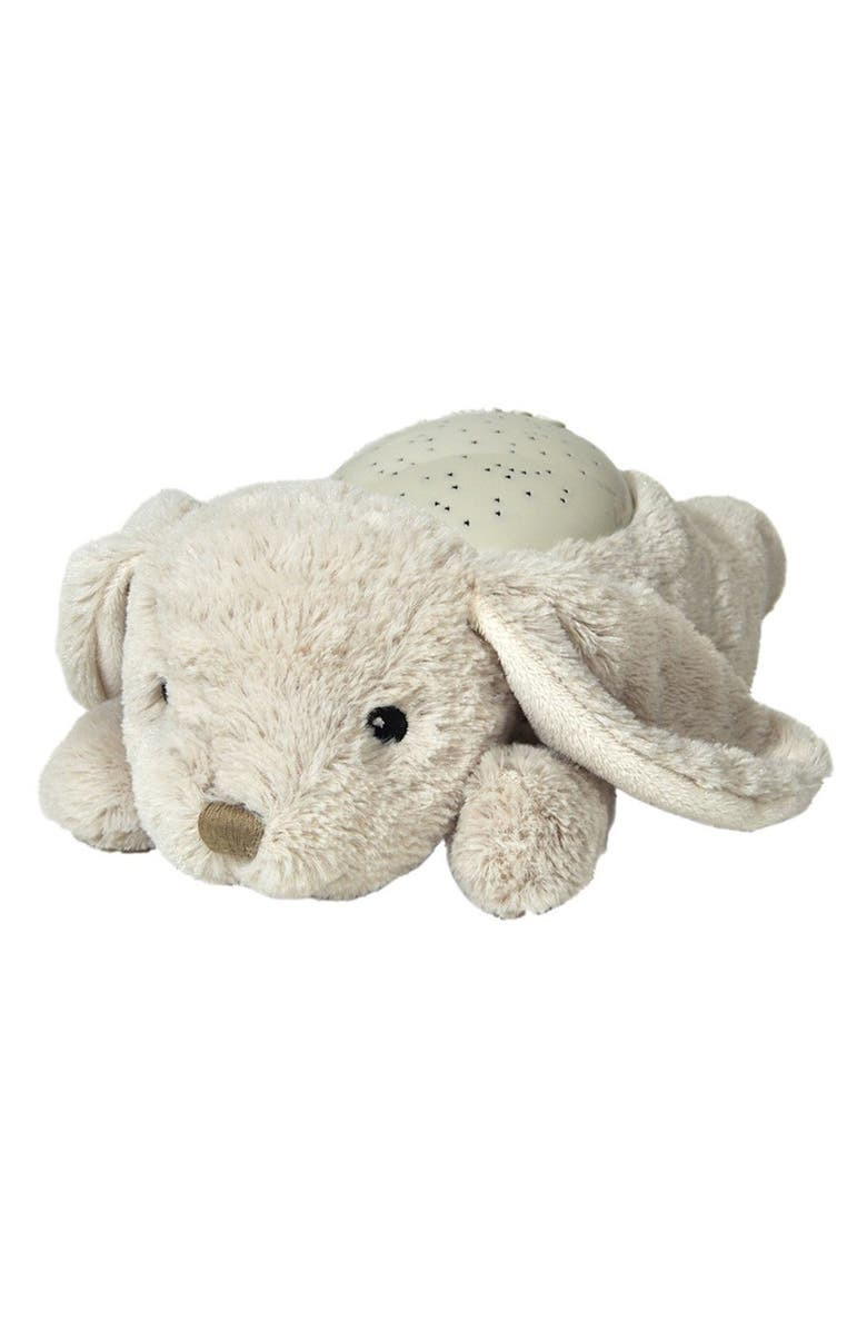 CLOUD B 'Twilight' Stuffed Turtle Night Light, Main, color, 020