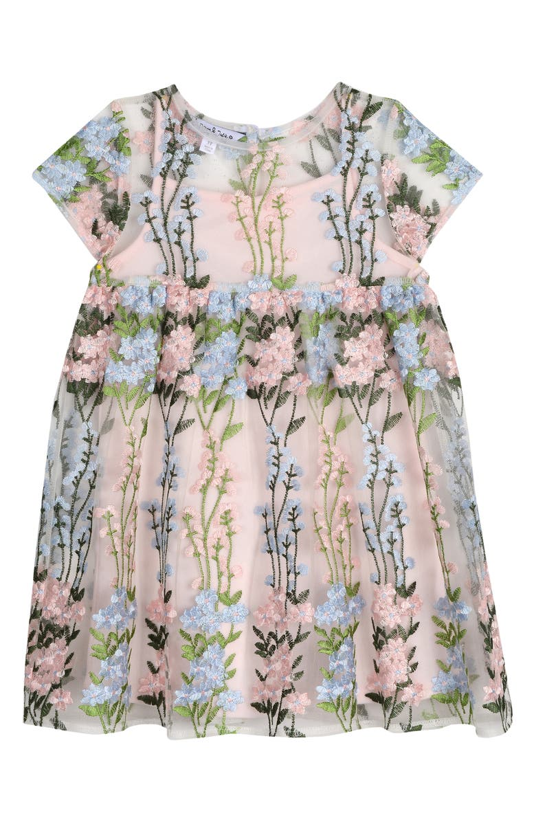 PIPPA & JULIE Floral Embroidered Dress, Main, color, MULTI