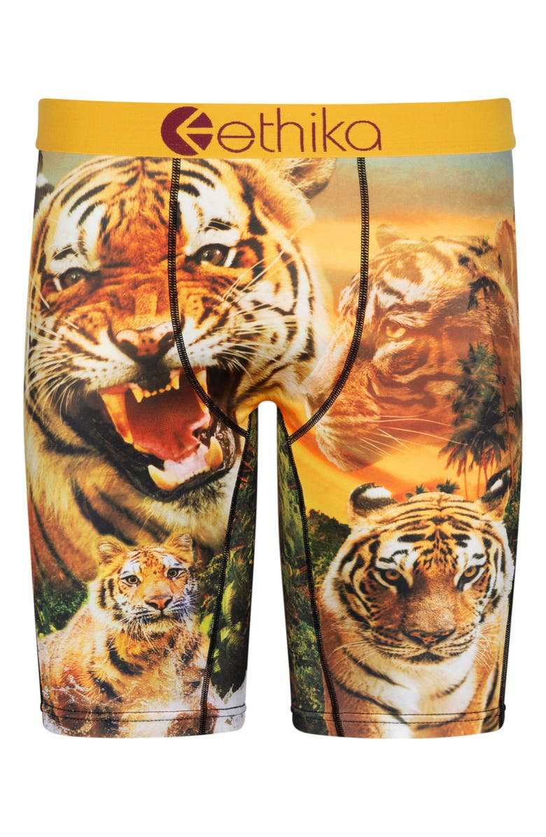 ETHIKA Kids' Easy Tiger Boxer Briefs, Main, color, ASSORTED