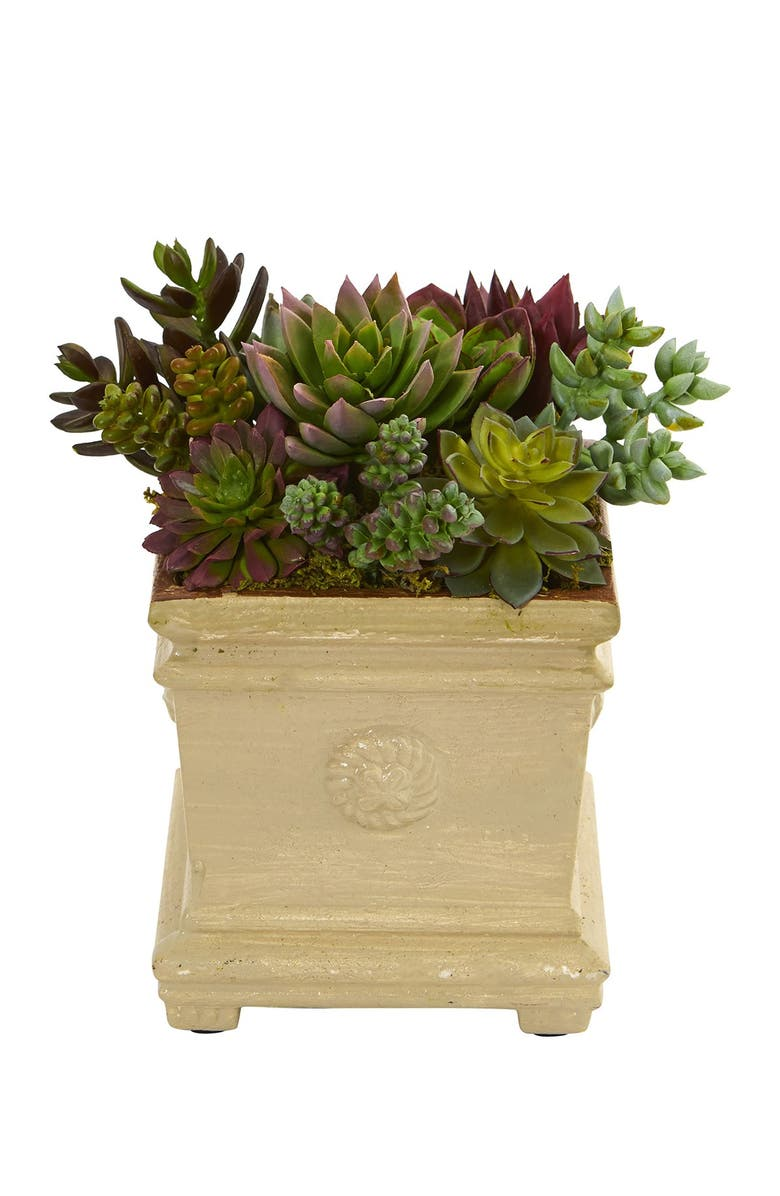 """NEARLY NATURAL 7.5"""" Mixed Succulent Artificial Plant in Decorative Vase, Main, color, GREEN"""